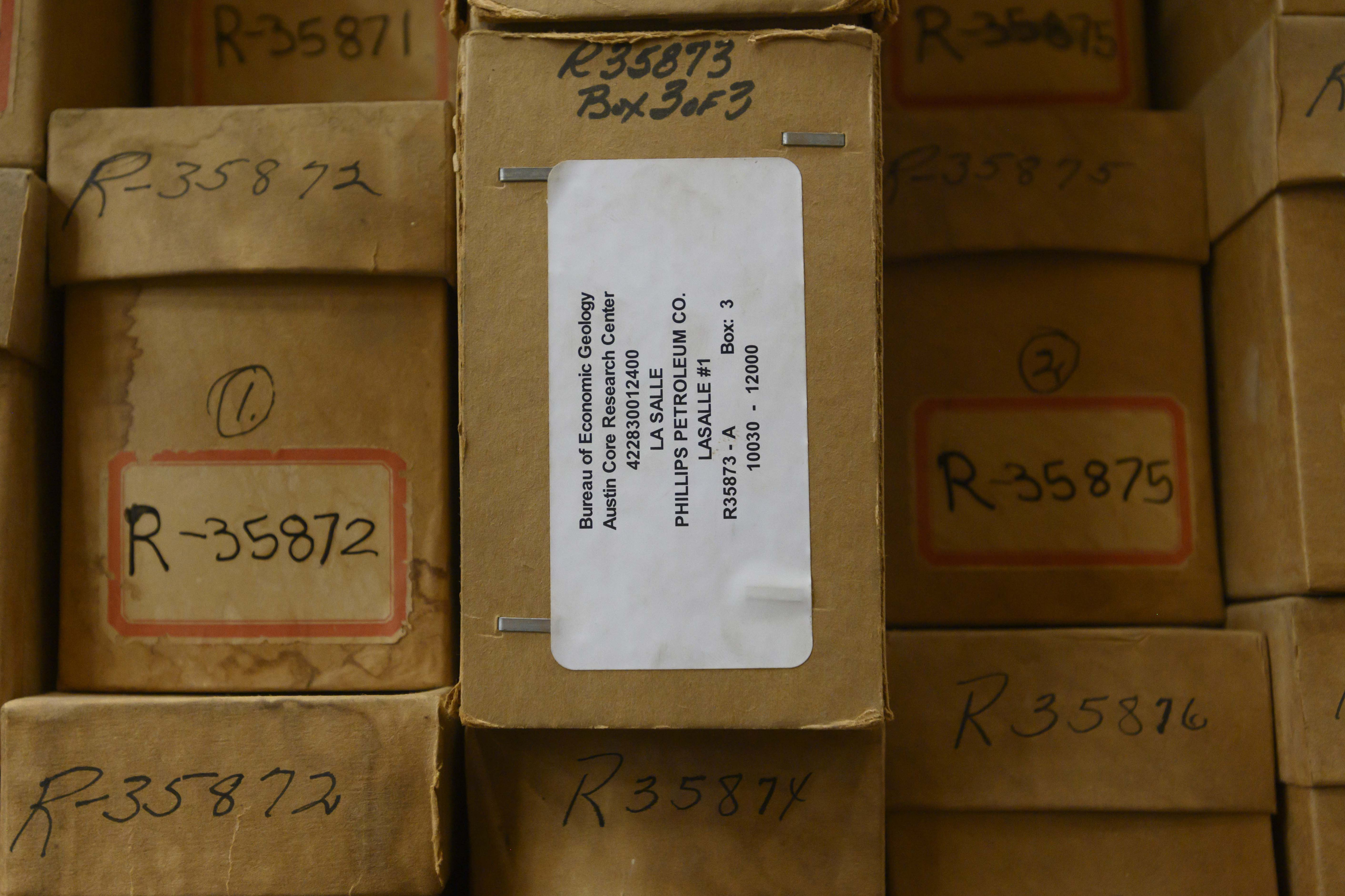 boxes of cuttings