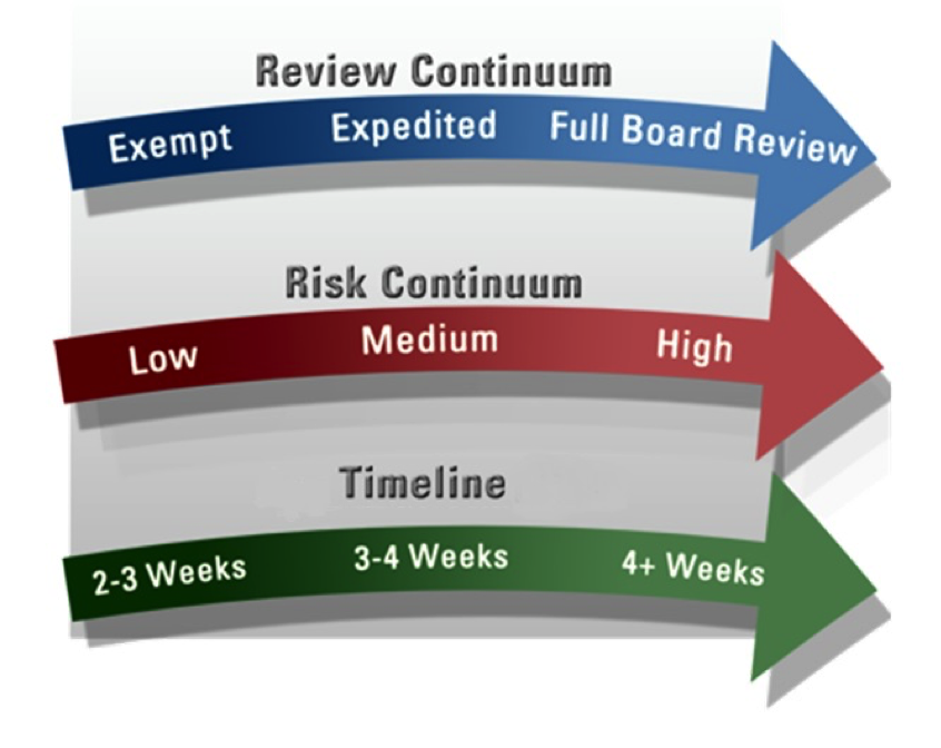 IRB Review Timeline